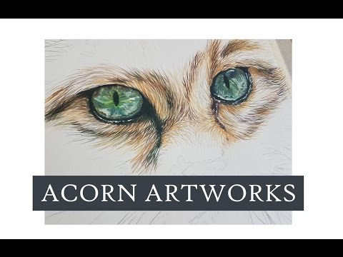 Acorn Artworks - Painting Eyes and Fur with Inktense (Part 1 of 3 Deconstructed painting of a Cat)