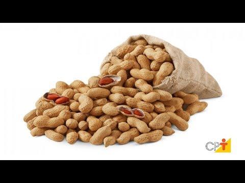 Clique e veja o vídeo Curso Produção de Amendoim de Qualidade - Plantio - Cursos CPT