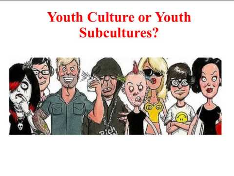 SY1 Youth Culture: Functionalism
