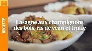 Lasagne aux champignons des bois, ris de veau et truffe