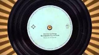 Sommerwerbung - Für Braunkohlen - Briketts   Schallplatte für Kino-Dia  - Vinyl