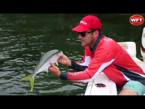 Catching Kingfish In Shallow Water — WFT Gliss KG Fishing Line Test