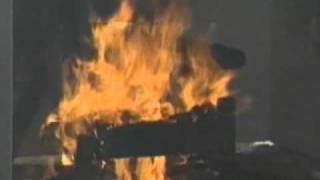 Contego Fire Barrier Test News Segment Thumbnail