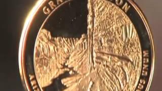 Gold Coin Spot Video