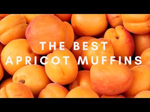 The best apricot muffins. Garden haul recipe. Oil free recipe