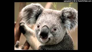 AAP Rocky & Skrillex - Wild for the Night (Dog Blood Remix)