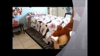 Extended Twin Bed
