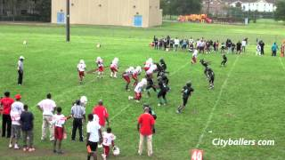 Detroit AYF - Westside Cubs vs Sharks
