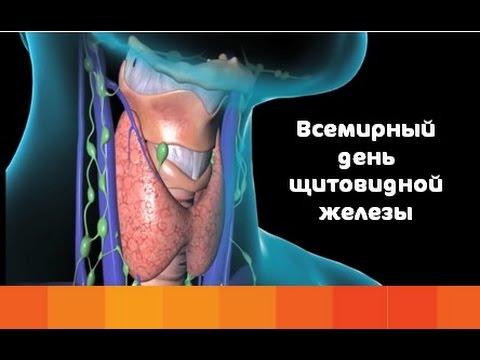 Женское здоровье и щитовидная железа