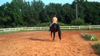 Randi Thompson. Riders Test. Is your horse on the inside hind? Cavalletti Walk/trot. Dressage