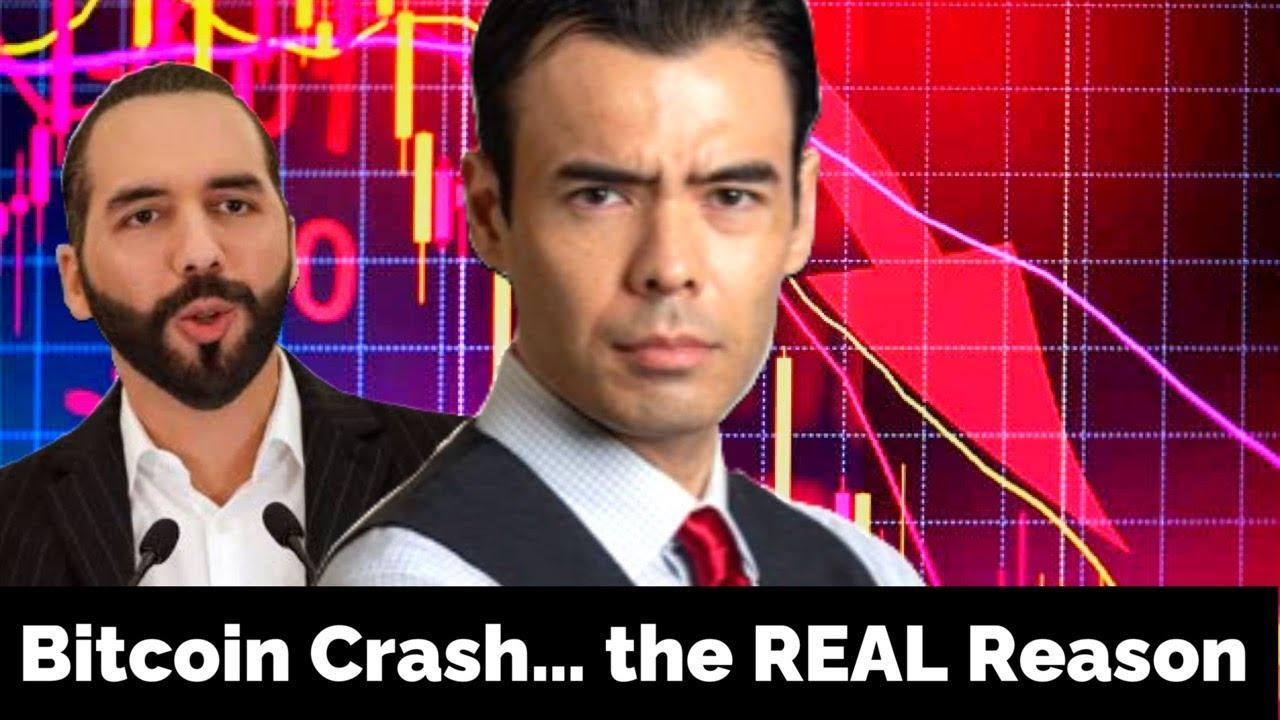 Download Bitcoin Crash...the REAL Reason