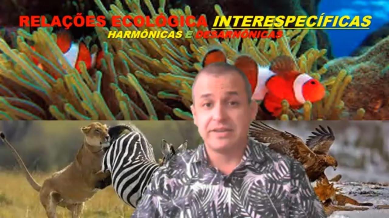 Ecologia: Relações Ecológicas Interespecíficas Harmônicas E Desarmônicas