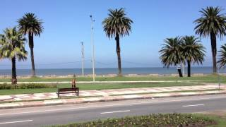 Playa de los Pocitos, Montevideo
