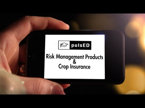 PulsED Webinar: Pulse Crop Risk Management Tools for Growers
