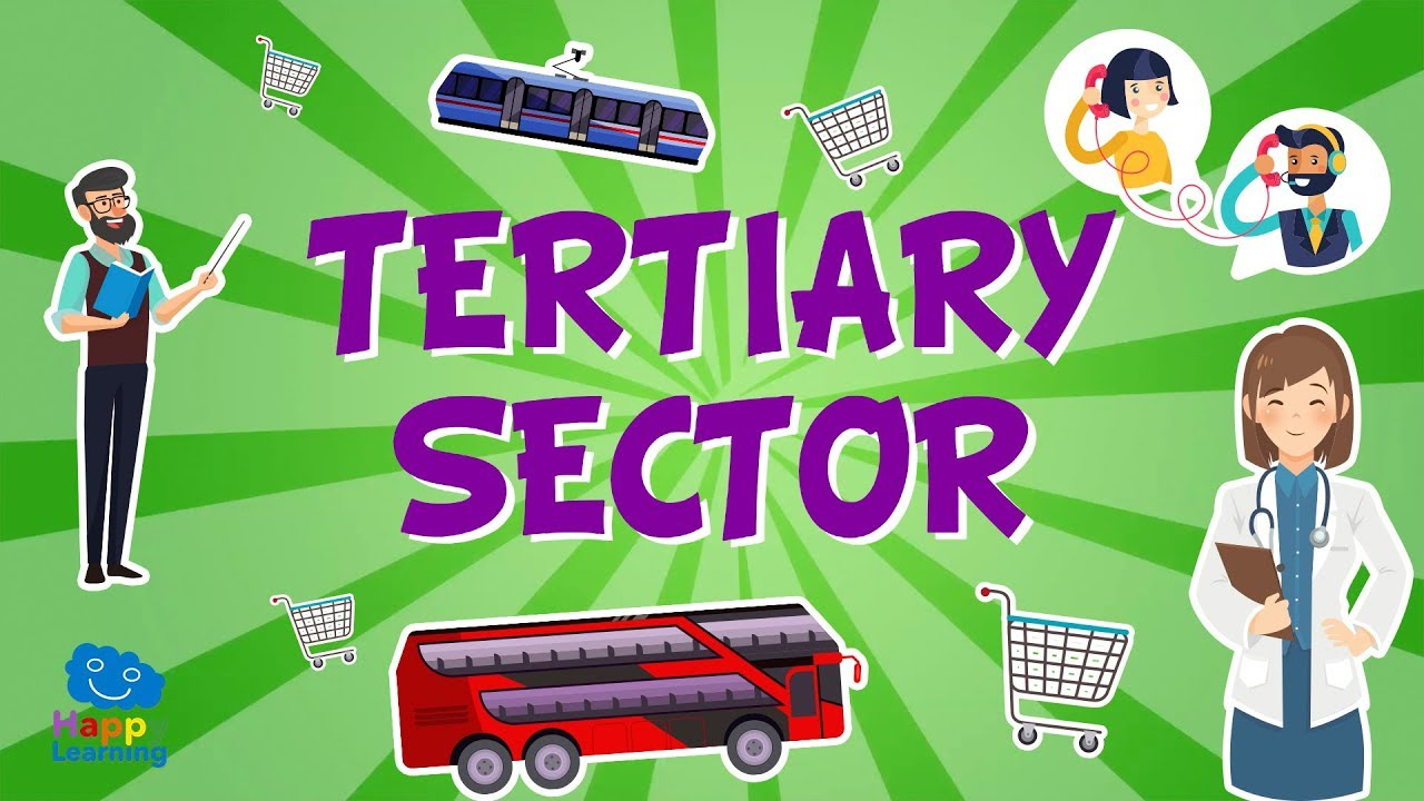 Download The Tertiary Sector : Jobs and their classification | Educational Videos for Kids