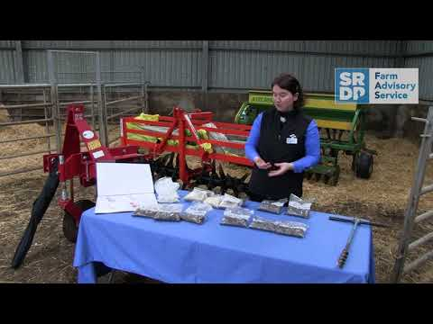 Soil liming: why it's important