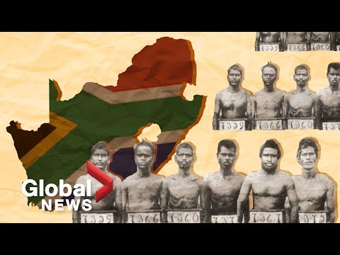 Indian South Africans: The Story Of Indentured Labourers
