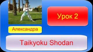 Карате в домашних условиях Урок 2 (Taikyoku Shodan)