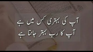 Best Islamic Quotes About Life | Inspirational Islamic Quotes