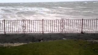Storm Damage Port William