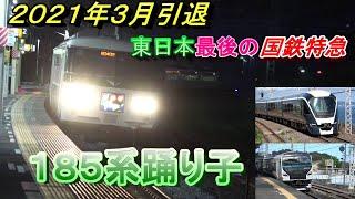 東日本最後の国鉄特急185系特急踊り子を撮りまくってみた