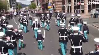 Ulster Grenadiers @ 36TH Ulster Division Review Centenary Parade 2015