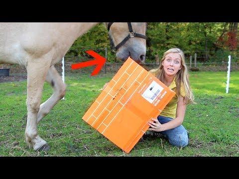 Mijn paard VERSTOORT de Epplejeck UNBOXING! + WINACTIE