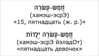 Урок № 44  Количественные числительные второго десятка женского рода