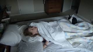 Rabbit wakes up sleeping girl!