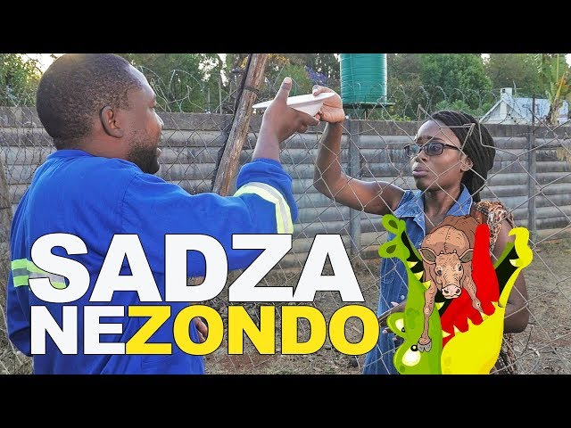 Youtube Trends in Zimbabwe - watch and download the best videos from Youtube in Zimbabwe.