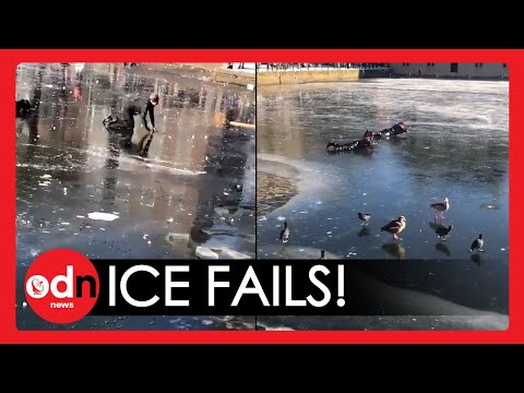 Netherlands Freeze: Skaters Needs RESCUING From Frozen Lake in The Hague