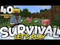 AWESOME ANIMAL FARMS!!! - Survival Let's Play Ep. 40 (DD) - Minecraft Bedrock (PE W10 XB1)
