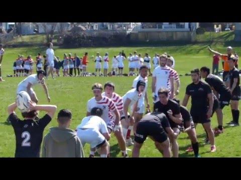 Lorne Park Spartans vs. Streetsville Tigers (Sr.)