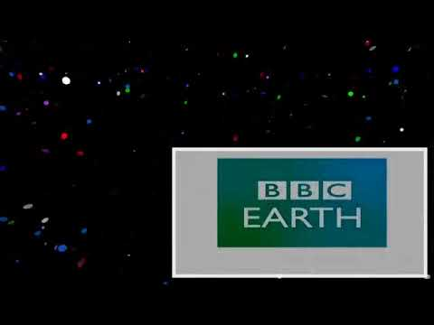 Attenborough Cares For a Baby Bear _ Zoo Quest for a Dragon _ BBC