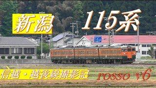 115系・新潟~信越・越後線撮影記