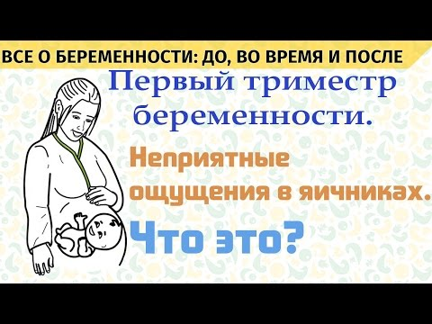 Могут ли на ранних сроках беременности болеть яичники
