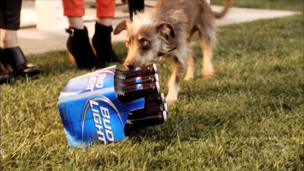 Superbowl xlvi bud light here we go rescue dog ad february superbowl xlvi bud light here we go rescue dog ad february 2012 youtube mozeypictures Choice Image