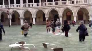 High Tide Venice November 11, 2012