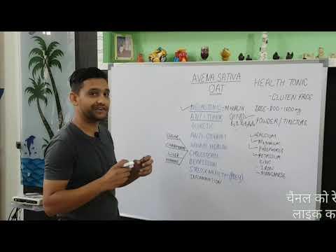 Avena sativa ! Homeopathic medicine Avena sativa q! In hindi !Oat straw powder &tincture uses