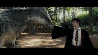 История Гарри Поттера (Harry Potter (Music Video))
