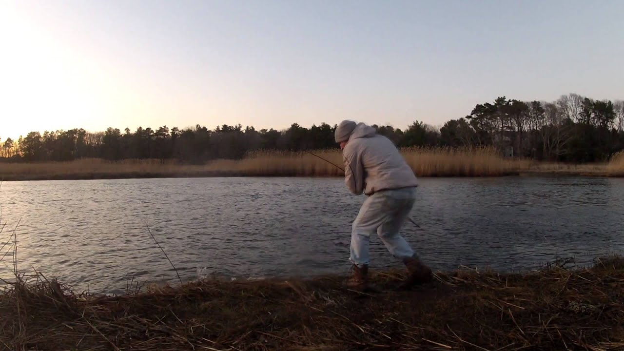 2014 cape cod fishing report 1st striped bass youtube for Cape cod fishing report