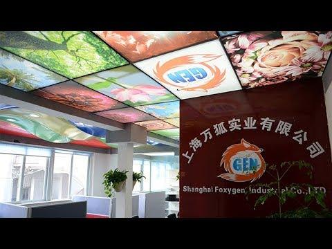 Company Introduction Shanghai Foxygen Industrial Co., Ltd.