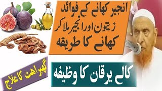 Anjeer Khane k Fawaid|zaitoon Anjeer|Olive oil And fig Benefits|Maulana Makki Alhijazi Sahab|Q&A