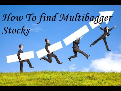 how to find multibagger stocks