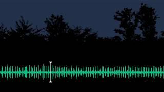 Download Slavík obecný - Luscinia megarhynchos - Common nightingale