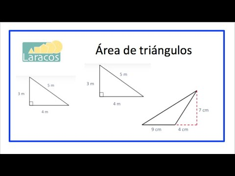 Area Y Altura De Triangulos Youtube