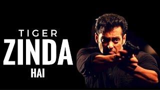 Tiger Zinda Hai : upcoming new hindi action movie 2017 | First look | latest news | Salman | Katrina