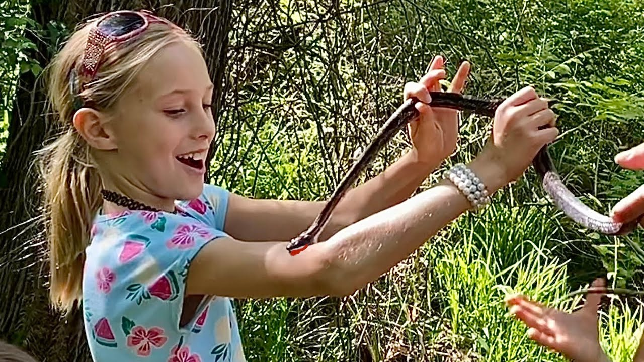 Why I let Snakes Bite My Kids? {We are BUYING this LAND!}