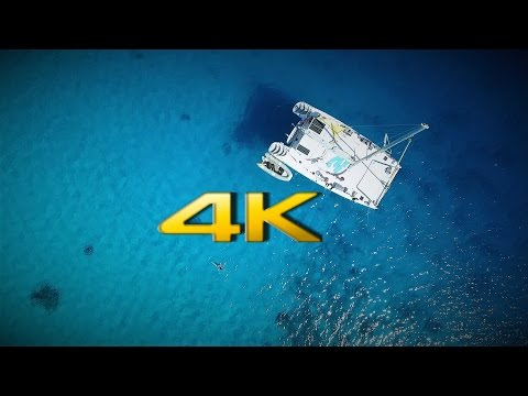 4k Video: Best Diving cruise through the Tuamotu Archipelago, French Polynesia