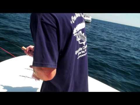Offshore Fishing 2010 - Bluefin and Skipjack Tuna